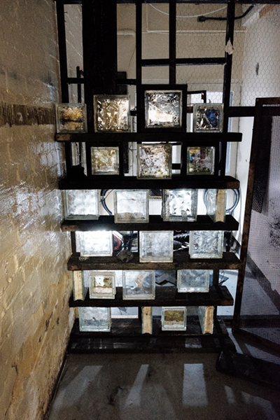 Glass blocks with Scaffolding boards